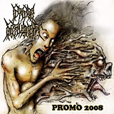 Infinite Defilement: Demo 2008