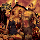 Atrocious Abnormality: Echoes of the Rotting